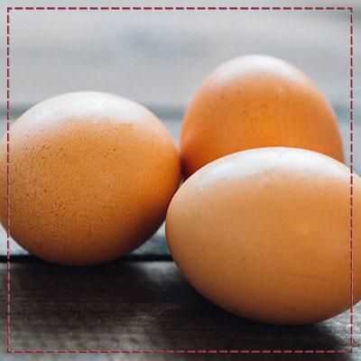 täglich frische Eier im Hofladen vom Ringlerhof in Ellbach